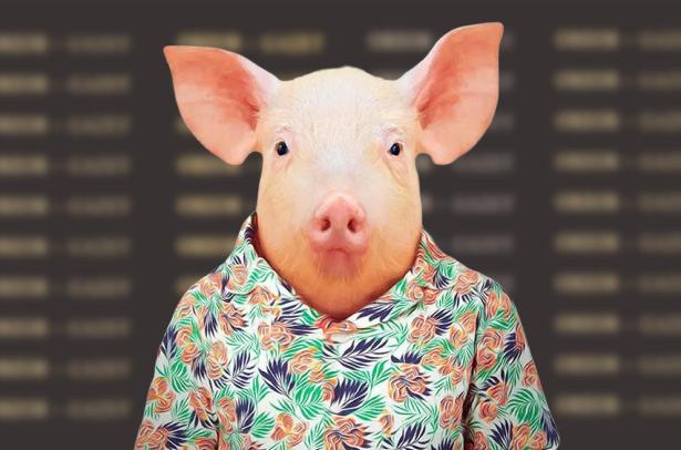 свинка