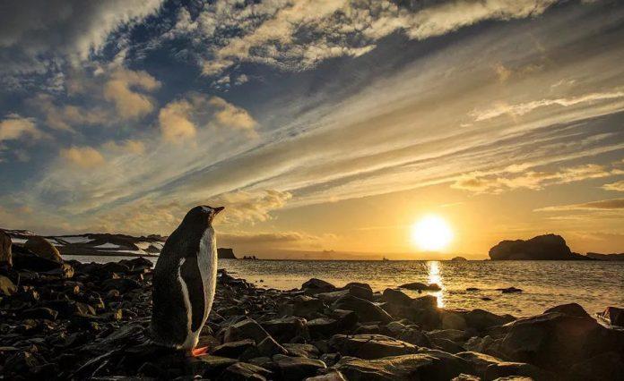 Природа и мы National Geographic